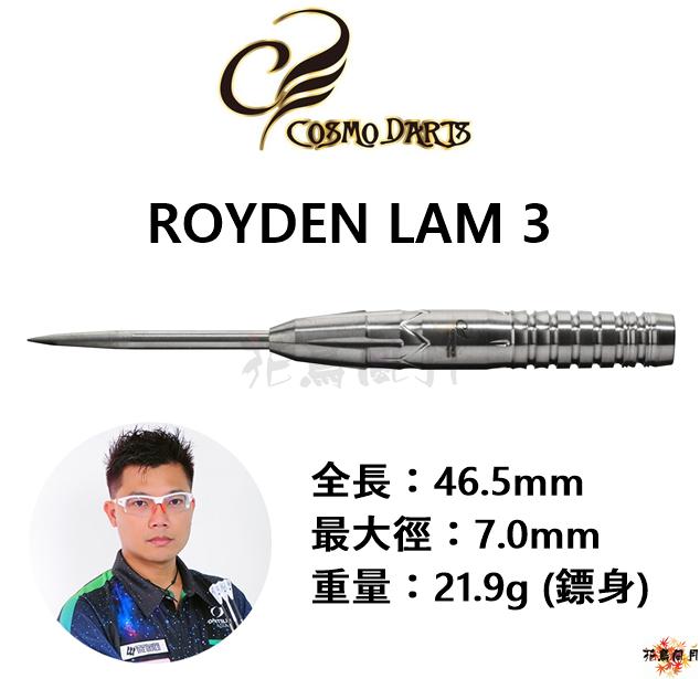 Cosmo-Cosmodarts-ROYDEN3-STEEL